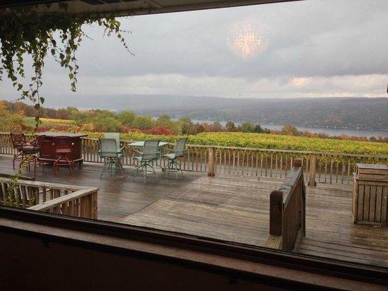 Dr. Konstantin Frank's Vinifera Wine Cellars: View from the tasting bar