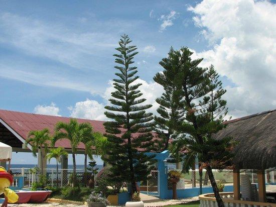 11 - Picture of Ocean Bay Beach Resort, Dalaguete ...