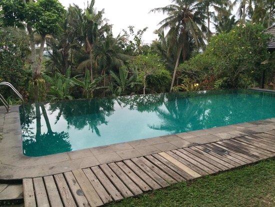 Ananda Cottages : Piscine