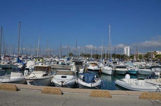 Port de plaisance 2 picture of st laurent du var french - Restaurant port de saint laurent du var ...