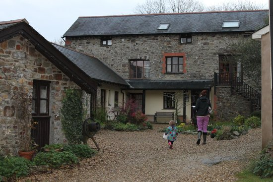 North Hayne Farm Cottages: Cottage courtyard