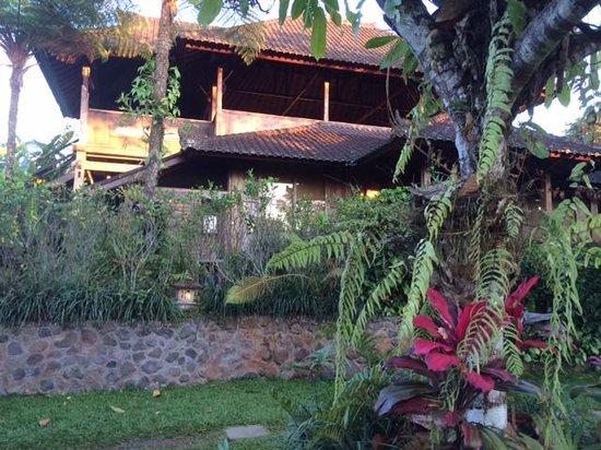 Bali Mountain Retreat : Open air training room