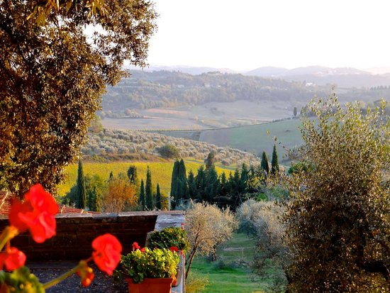 Walkabout Florence Tours: View from Fattoria Cinciano