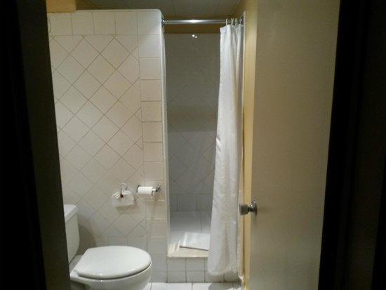 Mercure Comercial Santo Domingo: Bathroom