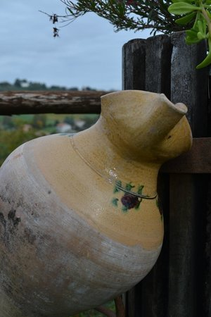 Locanda Montelippo: il giardino