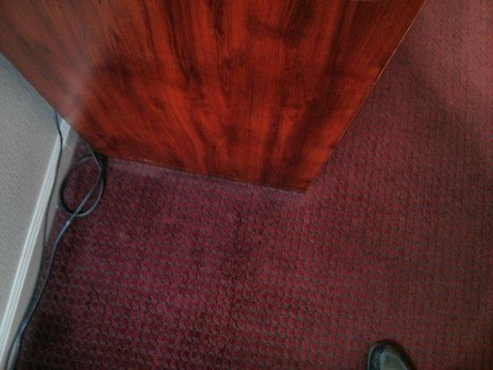 BEST WESTERN Salinas Monterey Hotel: Dust on carpet
