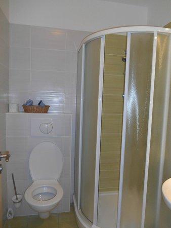 Hotel Cyro: Bathroom w shower