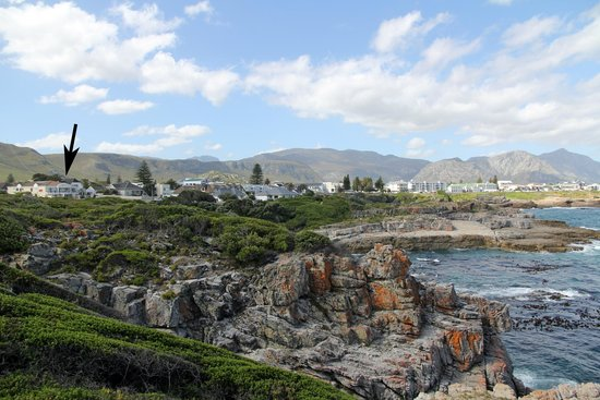 Hermanus Guesthouse: From a distance