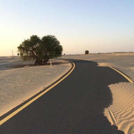 ‪Al Qudra Cycle Path‬