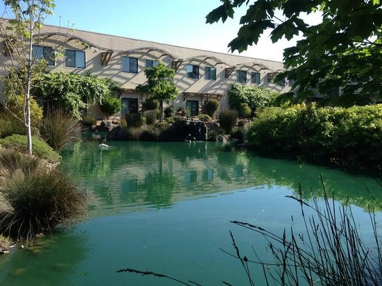 DoubleTree by Hilton Hotel & Spa Napa Valley - American Canyon: Gorgeous way to start the day