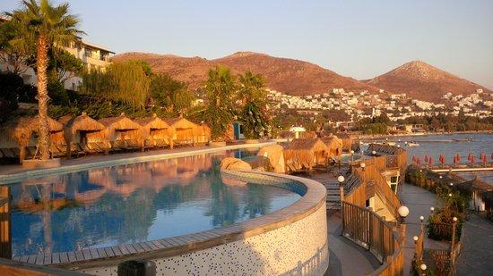 Kadikale Resort : The pool area