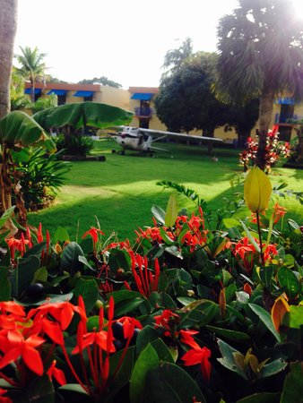 Parador El Faro: Garden Cessna