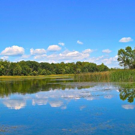 Birdwing Spa: Lake