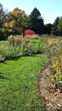 Perennial garden at Wingspread.