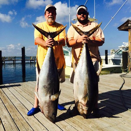 Mcguffies and their nice yellowfin tunas picture of capt for Captain mike fishing