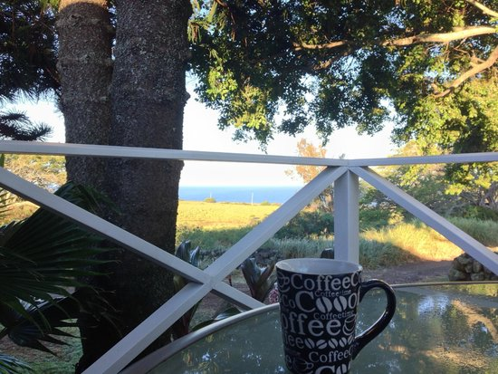 Puakea Ranch : Local coffee with an ocean view