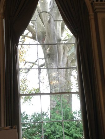 Sidholme Hotel: View from the Music Room