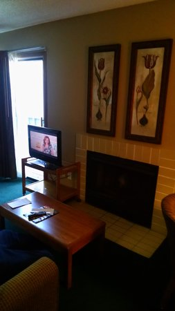 Arbor Suites At The Mall: Living area at Arbor Inn