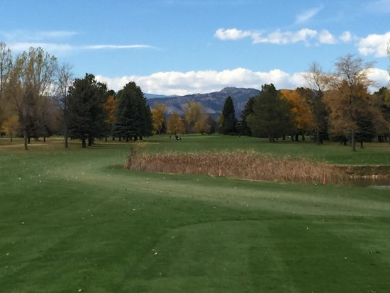 Collindale Golf Course: #2 par 4 looking west
