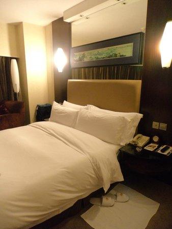 Grand Trustel Purple Mountain Hotel: Quarto Minúsculo