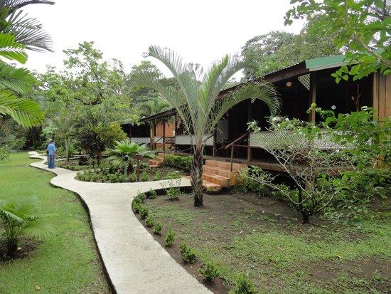 Mawamba Lodge : les chambres