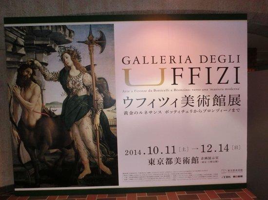 Tokyo Metropolitan Art Museum: ポスター