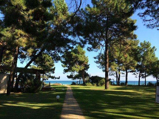 Vignale Resort