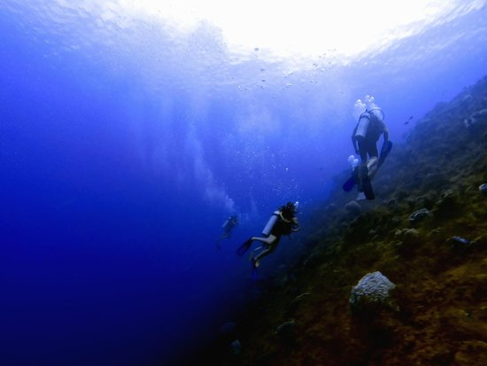 Always Diving & Water Sports : Pared Santa rosa, Cozumel.