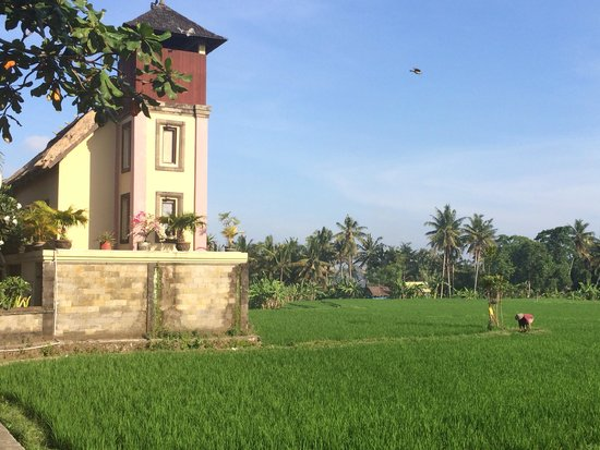 Biyukukung Suites and Spa : Front entrance and rice field