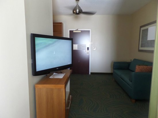 SpringHill Suites Charleston Downtown/Riverview : flat screen