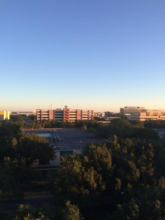 Embassy Suites by Hilton Tampa-USF/Near Busch Gardens: View of some of the USF campus from the 7th floor
