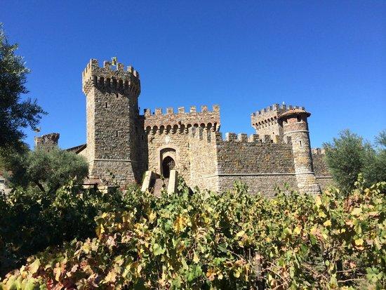 View From Castle Picture Of Castello Di Amorosa