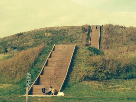 Cahokia Mounds State Historic Site : Monks mound