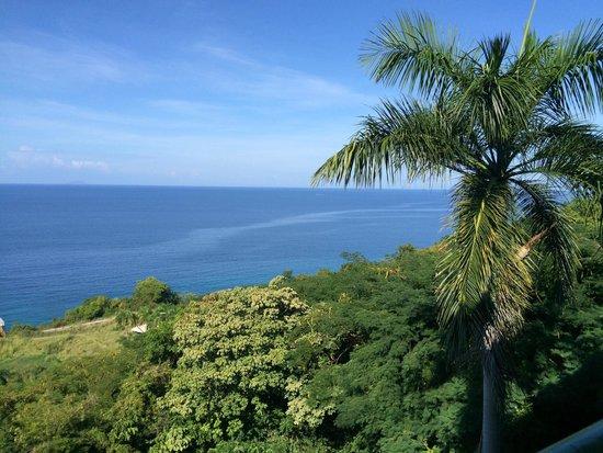 Hotel Cielo Mar: View