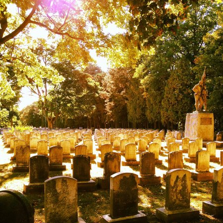 Mount Hope Cemetery: Love it there!