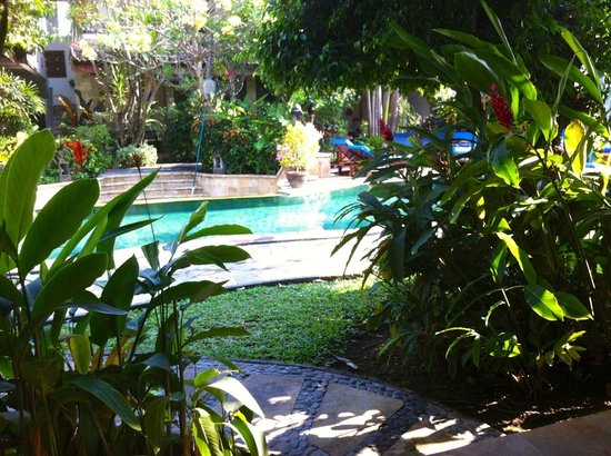 Tamukami Hotel : Pool view through our bungalow door, so peaceful