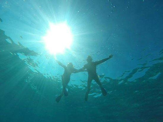 Aquanature: hello :)