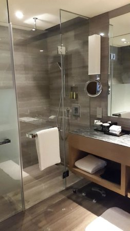 Hyatt Regency Chongqing Hotel: bagno particolare doccia