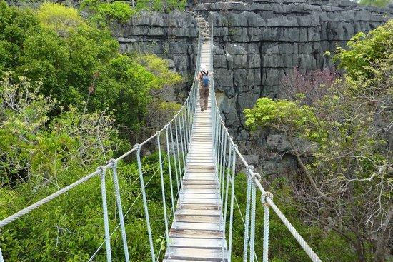 Ankarana Reserve: Site créé par Nicolas Hulot