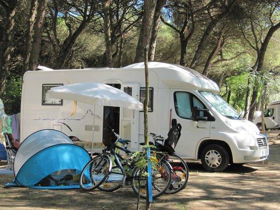 Piomboni Camping Village: Il Camping - The campsite - Der Campingplatz - Le camping