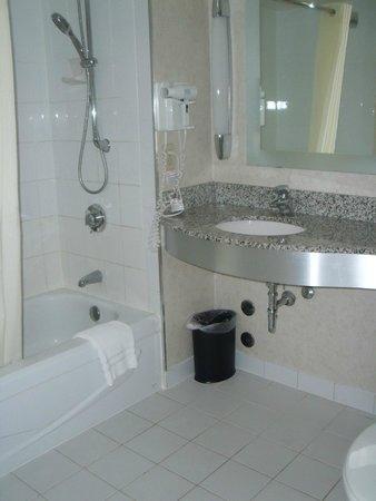 Novotel Toronto Centre : Bathroom