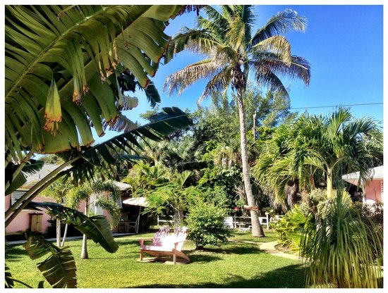 West-End Paradise: Common yard area is well maintained.