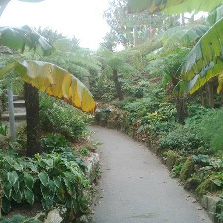 The garden room bar and bistro falmouth restaurant for Garden room reviews