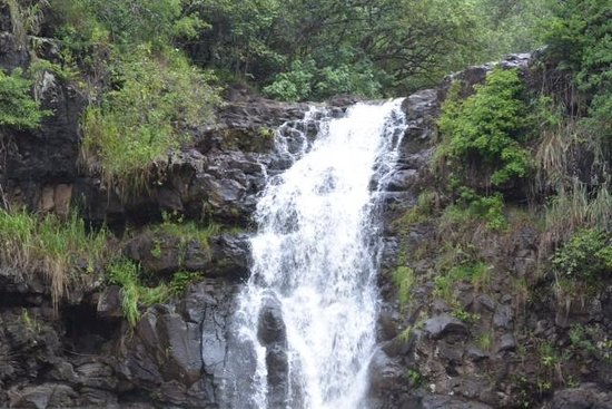 Waimea Valley: You call that a waterfall?