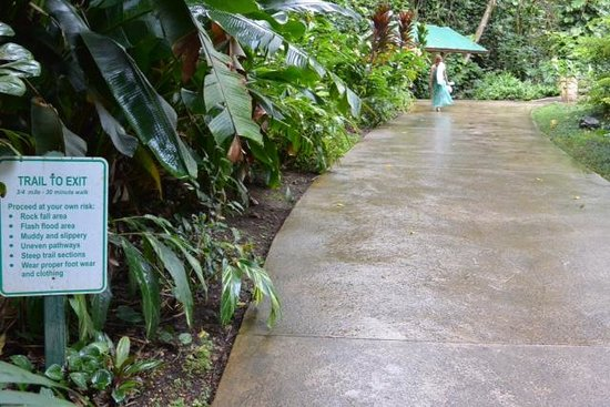 Waimea Valley: A warning of the dangers of walking on the concrete path