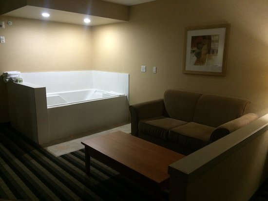 Executive Hotel Alexandra at Edmonton Airport : very comfortable jacuzzi for two - very clean