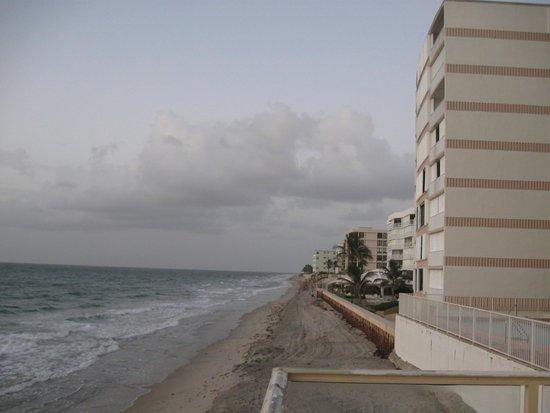 Palm Beach Oceanfront Inn: Beach front