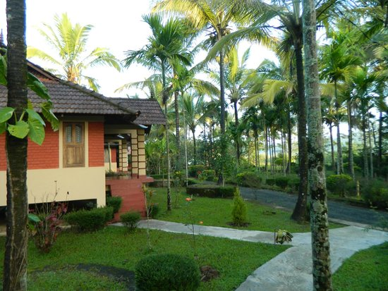 Wayanad Nature Resorts: Rooms