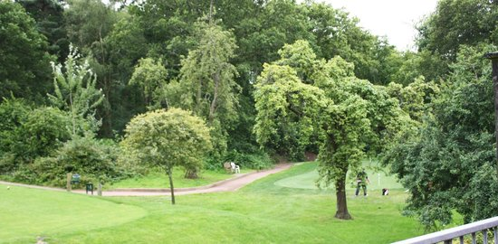 Cottesmore Golf and Country Club: Views from Rooms