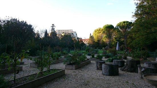 Manoir de la Roseraie : le potager